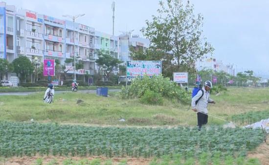 Phun thuốc trừ sâu giữa khu dân cư - Nỗi lo dai dẳng