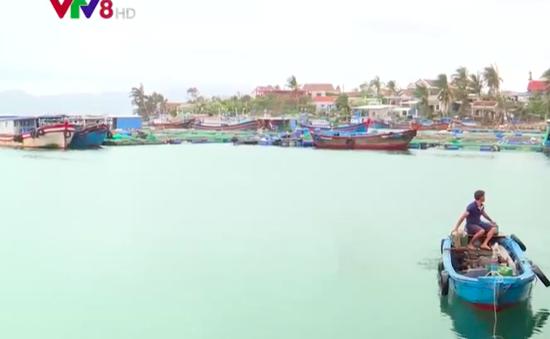 Chậm hỗ trợ người nuôi trồng thủy sản bị thiệt hại do bão số 12