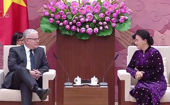 Chủ tịch Quốc hội tiếp Đại sứ Australia và New Zealand