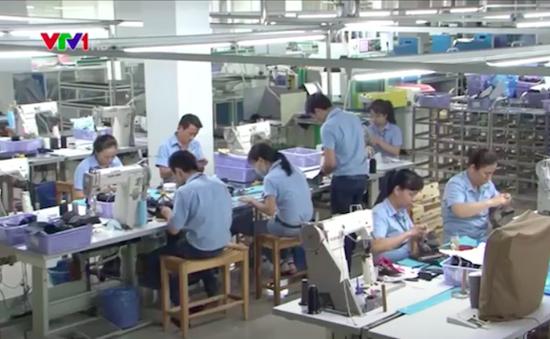 Mở rộng quan hệ thương mại Việt Nam - Italy trong lĩnh vực da giày