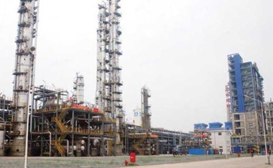 Bộ Tài chính đề xuất không giãn nợ dự án Đạm Ninh Bình