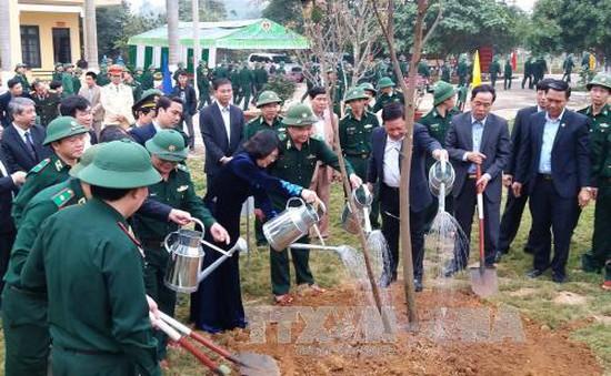 Phó Chủ tịch nước tham dự Tết trồng cây tại Hòa Bình
