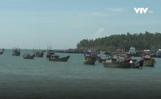 Ngư dân vẫn vi phạm về vùng lãnh hải