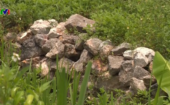 Nhập nhèm đất, đá dự phòng sự cố vỡ đê