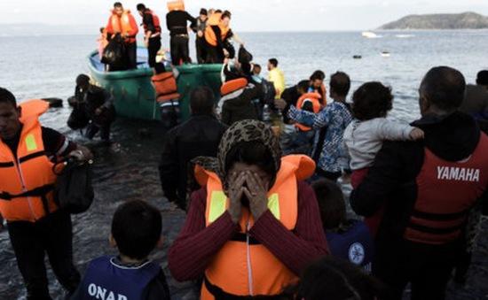 Thổ Nhĩ Kỳ bắt giữ hàng trăm người di cư
