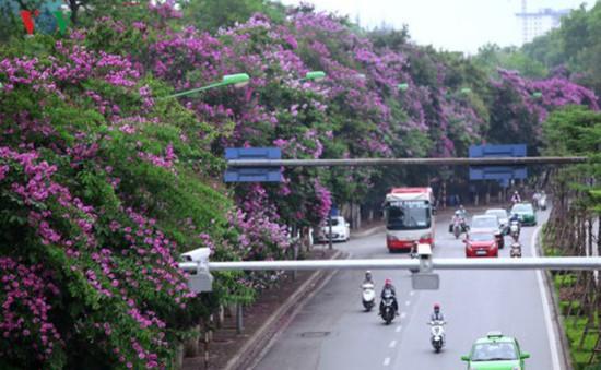 Cấm ô tô, thu hẹp đường Kim Mã còn 3m để làm Metro Hà Nội