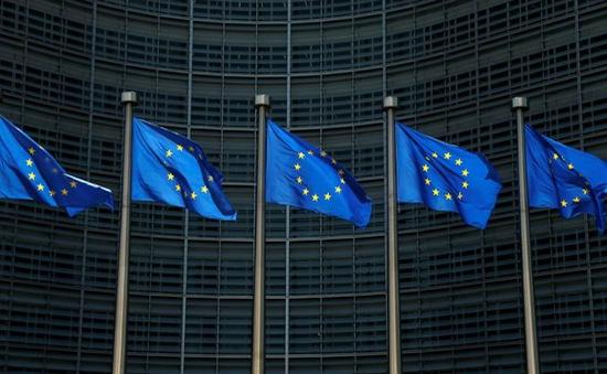 Chấn chỉnh nạn trốn thuế, EU soạn thảo chính sách thu thuế mới