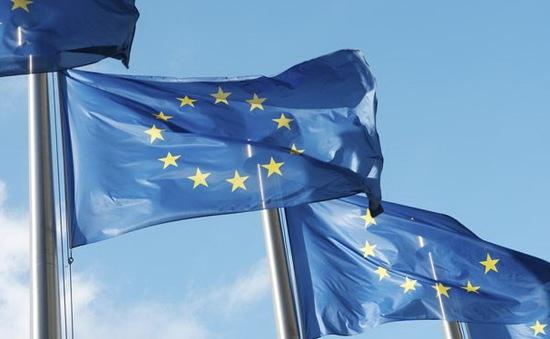 """EU sẽ công bố danh sách đen các """"thiên đường thuế"""""""