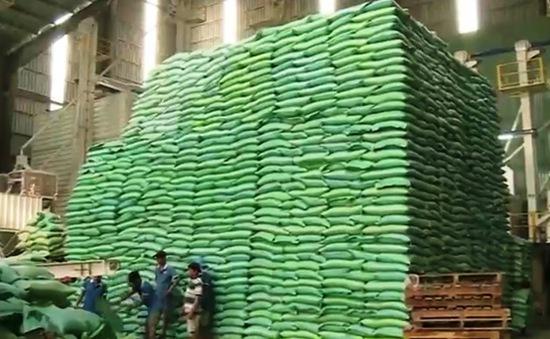 Dự báo thị trường gạo thế giới 2017: Mất cân đối cung - cầu