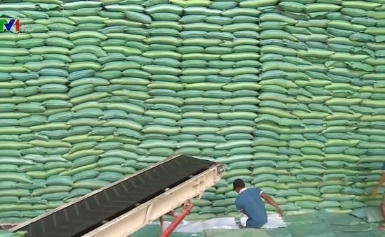 Xuất khẩu gạo đón nhiều dấu hiệu khởi sắc