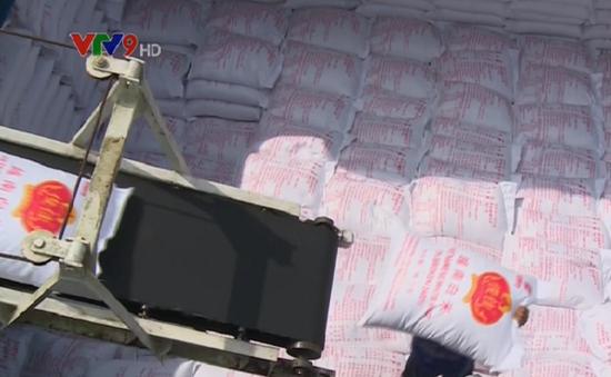 Giá gạo xuất khẩu sẽ tăng cao trong quý III/2017