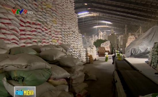 Giá gạo nếp xuất khẩu bất ngờ tăng cao
