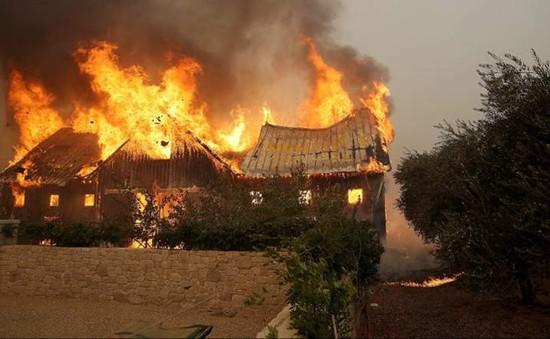 Cháy rừng tại California (Mỹ) có thể gây ra những thiệt hại không thể lường trước