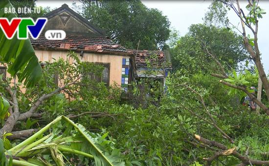 Phú Yên: Một người bị thương, 7 căn nhà bị tốc mái do giông lốc