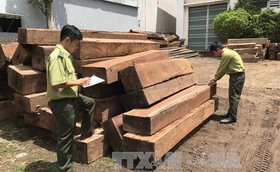 Phát hiện 2 điểm tập kết gỗ lậu tại xã Đắk Trăm, Kon Tum