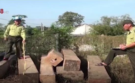 Hà Tĩnh: Thu giữ hơn 2m3 gỗ không rõ nguồn gốc