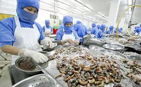 Xuất khẩu hải sản Việt Nam vào EU đứng trước nguy cơ sụt giảm