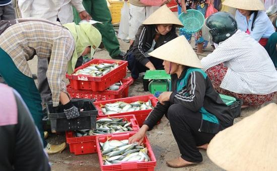 Kinh doanh hải sản ở Hà Tĩnh ổn định trở lại