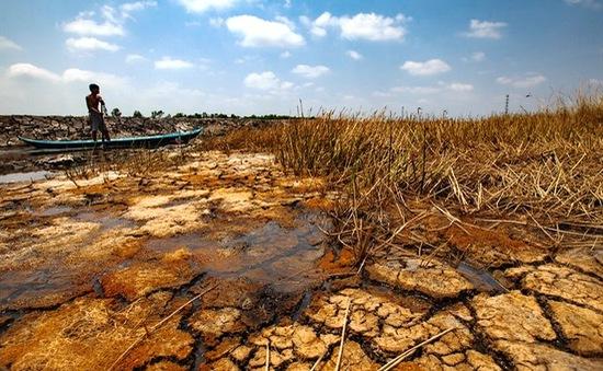 Lập bản đồ cảnh báo hạn mặn và ngập lụt