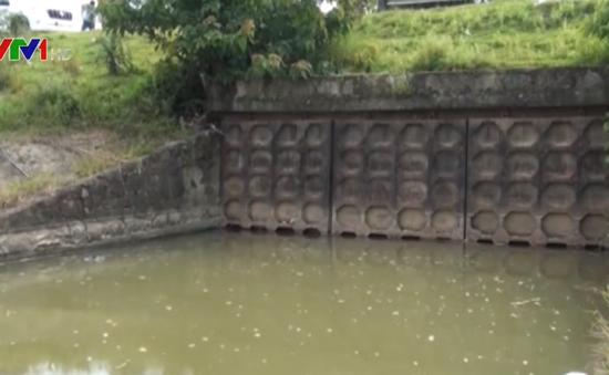 Hơn 300 hồ đập trên cả nước trong tình trạng nguy hiểm