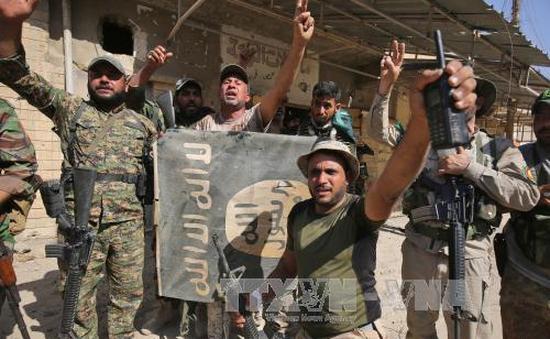 Iraq giải phóng hoàn toàn thành phố Tal Afar