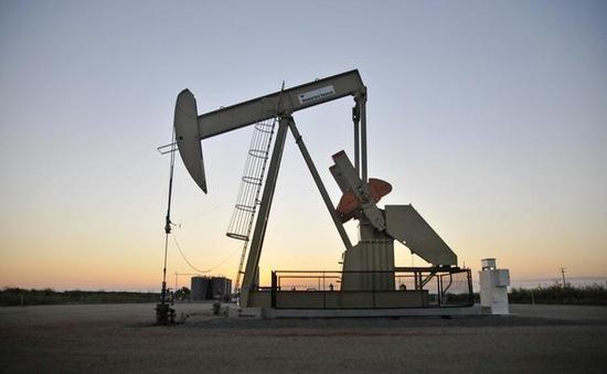 Mỹ lên kế hoạch bán một nửa kho dự trữ dầu trong 10 năm
