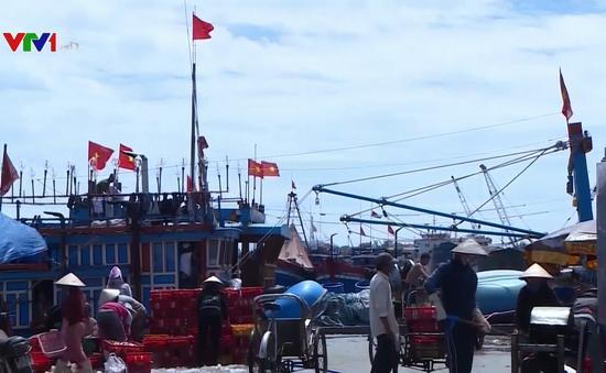 TT-Huế: Cắt giảm đầu tư khu neo đậu tránh trú bão Thuận An