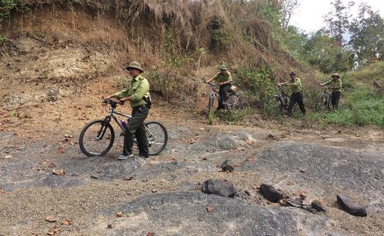 Đồng Nai: Một kiểm lâm bị đâm trọng thương khi tuần tra rừng