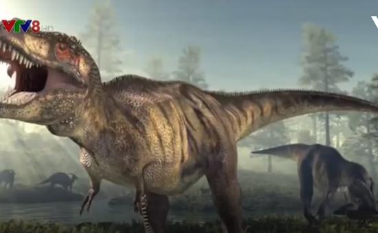 Phát hiện loài khủng long ăn thịt khổng lồ mới từng tồn tại ở miền Nam châu Phi