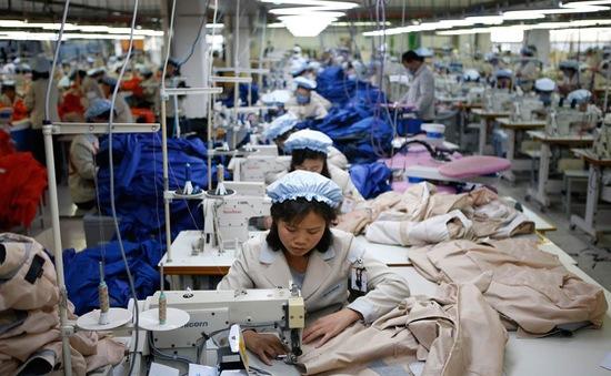 Bình quân độ tuổi lao động tại Việt Nam đang giảm dần