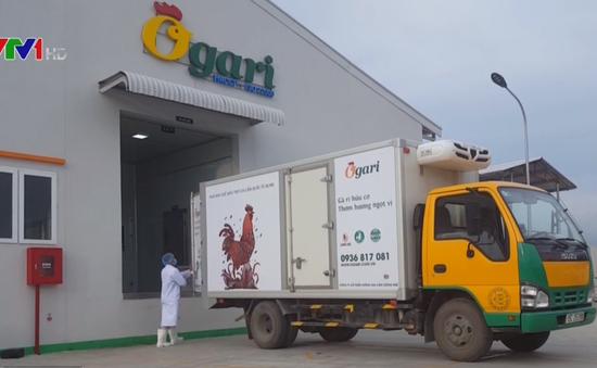 Giảm chi phí cho doanh nghiệp nhờ logistics tập trung