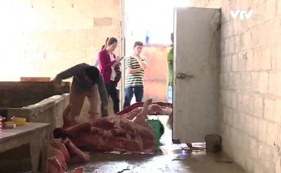 Cao Bằng: Thu gom lợn chết làm thịt hun khói