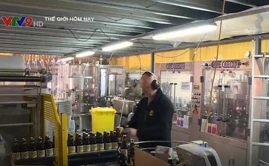 Chống lãng phí, nước Anh biến bánh mì thành bia