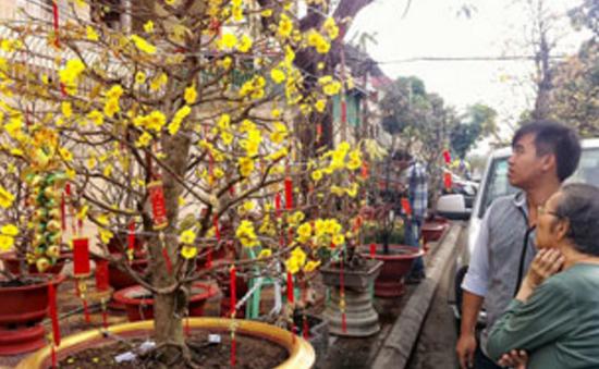 Sôi động không khí đón Tết ở Campuchia