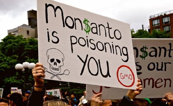 Hàng nghìn nông dân Mỹ kiện Monsanto vì thuốc diệt cỏ gây hại