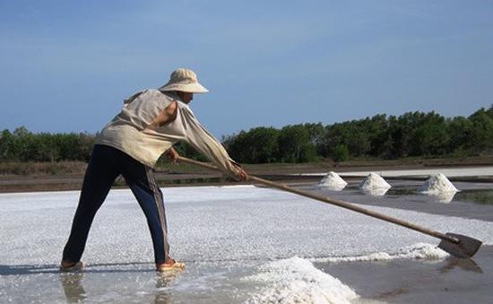 Lượng muối tồn đọng giảm nhanh