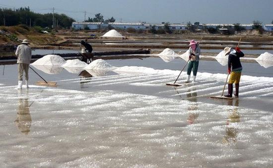 Ninh Thuận điều chỉnh 422ha đất làm muối ra khỏi dự án