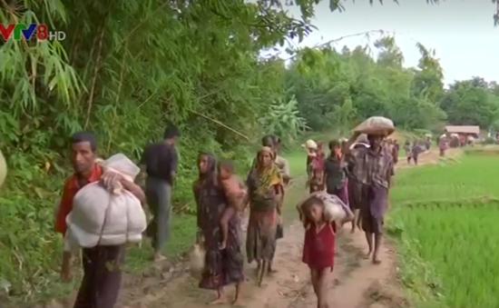 Myanmar lập ủy ban cố vấn thực thi khuyến nghị về bang Rakhine