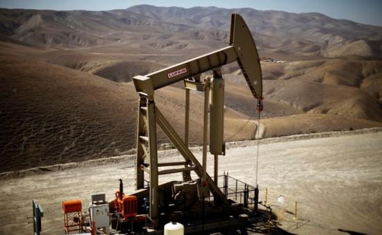 Saudi Arabia chính thức tăng giá dầu tại châu Á trong tháng 7