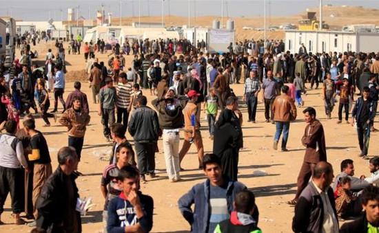 Gần 1.000 người bị ngộ độc thực phẩm tại khu trại tị nạn ở Iraq