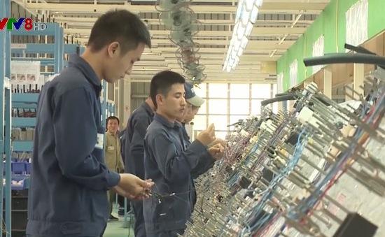 Thêm cơ hội cho lao động Việt Nam sang Nhật Bản làm việc