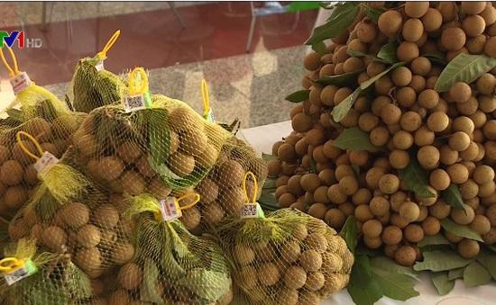 Lô nhãn Hưng Yên đầu tiên xuất khẩu sang Mỹ