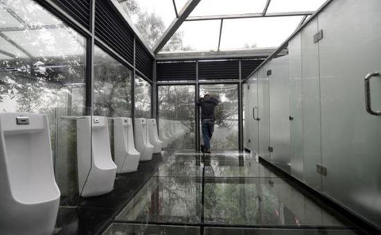 Cuộc cách mạng... nhà vệ sinh của Trung Quốc