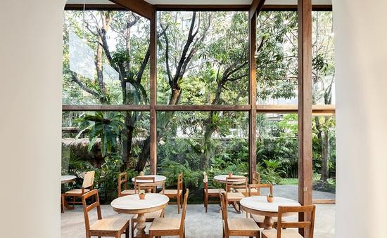 Quán cà phê trong suốt, giao hòa với thiên nhiên ở Thái Lan