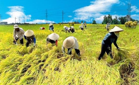 Hà Nội: Sở Nông nghiệp và PTNT phấn đấu nâng tốc độ tăng trưởng ngành