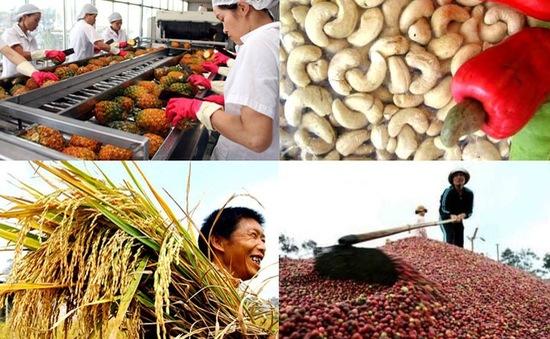 Nhiều thách thức trong xuất khẩu nông sản năm 2018