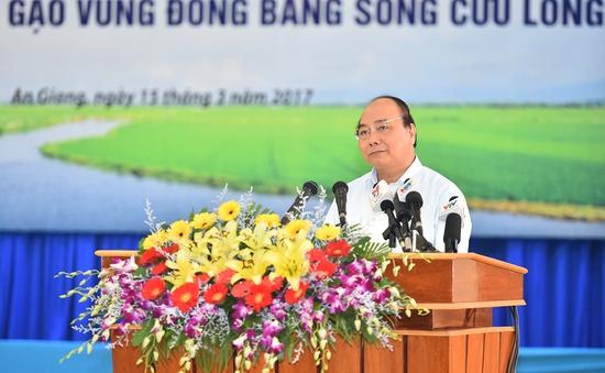 Thủ tướng: Cần một tầm nhìn mới cho hạt gạo Việt Nam