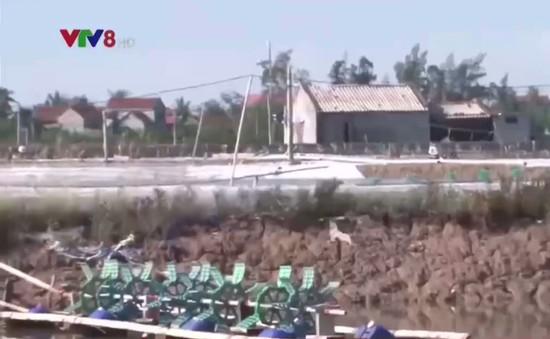 """Nhiều hộ nuôi tôm Nghệ An """"trắng tay"""" sau bão số 10"""
