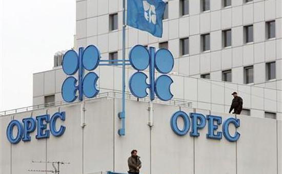 Sản lượng dầu mỏ OPEC tăng bất chấp thỏa thuận cắt giảm