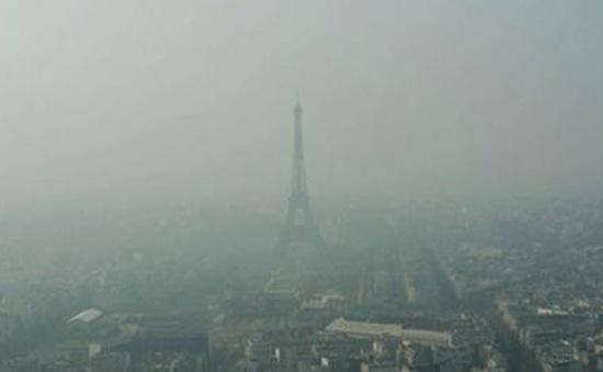 Pháp: Nạn nhân của ô nhiễm không khí đâm đơn kiện chính phủ